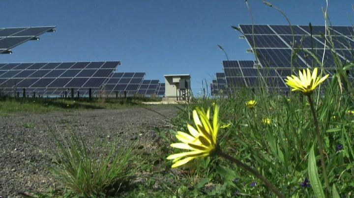 In Sudafrica il primo aeroporto a energia solare del continente